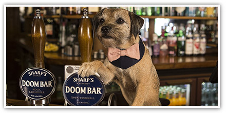 Vintage Inns welcomes pups to the pub